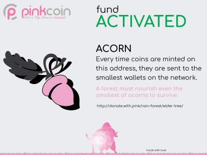 Acorn Activated-01